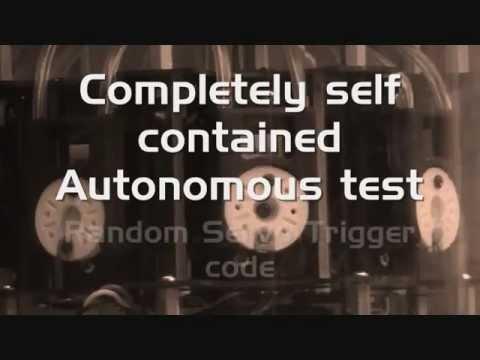 Autonomous test for Animatronic Bird