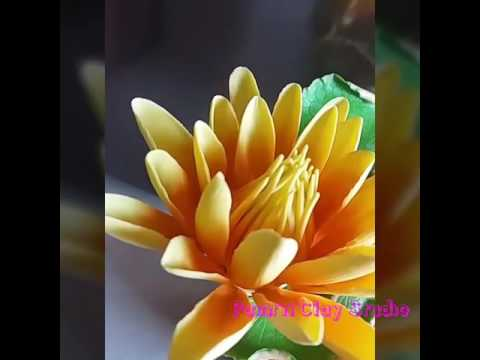 Thai clay Waterlilies