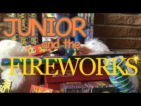 Junior and the Fireworks - Webkinz