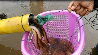 New Technique Of Catching - Believe This Fishing? Unique Fish Trapping System Country Fish (part 3)