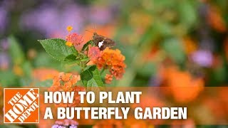 How To Build A Butterfly Garden The Home Depot