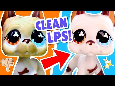 How I Clean LPS In 5 Easy Steps! Washing Dirty Littlest Pet Shops Tutorial & Tips