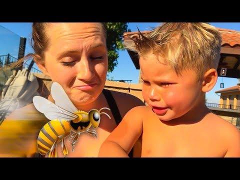 WE MET A BEE! 🐝