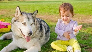 Funny Babies Talking to Dogs - Funny Dog and Baby Videos