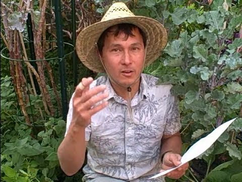 Should I Use Horse Manure in My Vegetable Garden? and other Organic Gardening Q&A