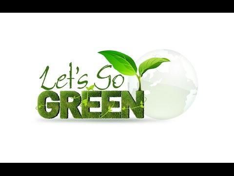 Fulton Science Academy Private School Let's Go Green