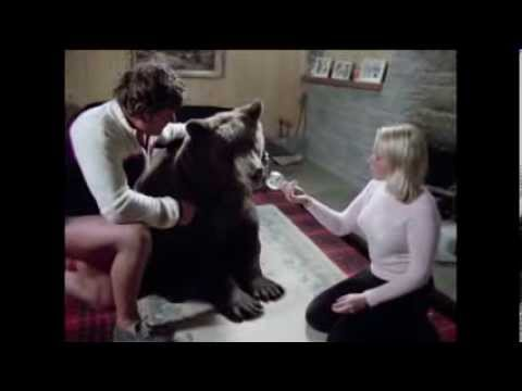 HERCULES THE HUMAN BEAR