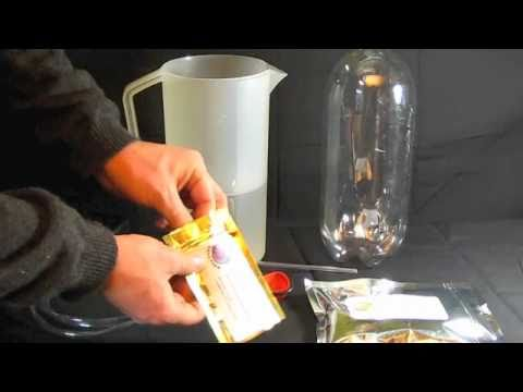 DIY How To Hatch Brine Shrimp Eggs