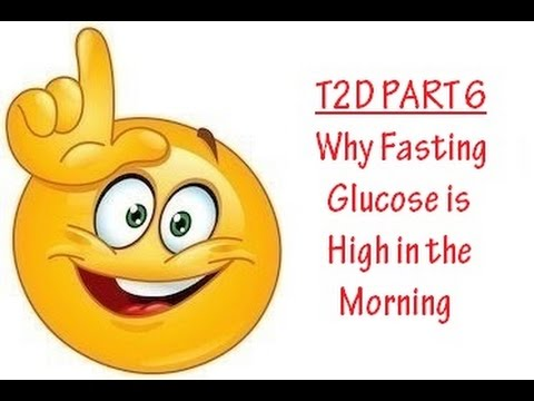 Understanding Why Fasting Glucose is High in the Morning