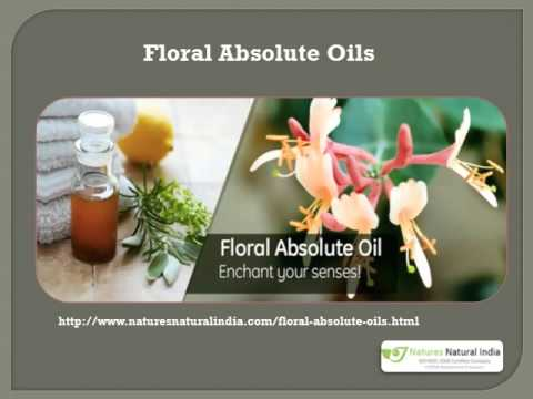 Organic Essential Oils Wholesale and Suppliers at Naturesnaturalidia com