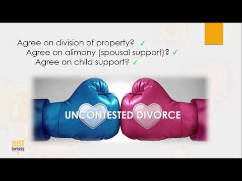 Divorce Options in Florida: Which Type of Divorce Should You File?