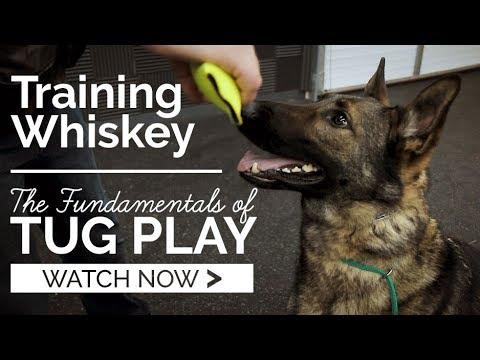 Fundamentals of Tug Play