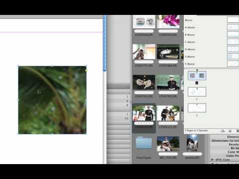 How to Use InDesign Template Tutorial