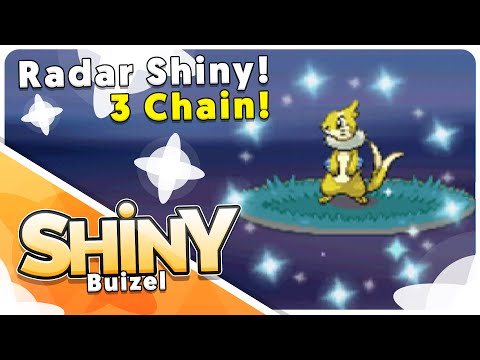 [Live] 3 CHAIN Shiny Buizel in Pearl Poke Radar!