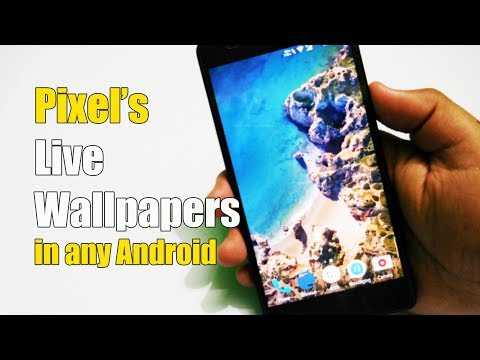 Pixel's Live Wallpapers in Any Android | Amazing!!