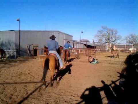 Spur's bronc ride (1)