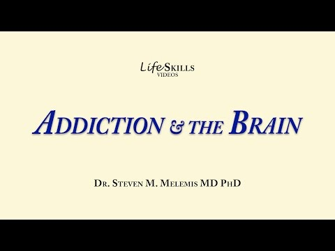 Understand Addiction and the Brain