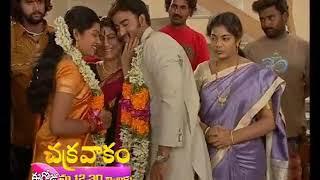 Prathigatana | Today at 6 PM | Gemini TV - Love To Your Videos