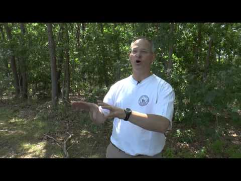 How To Avoid Ticks: Tick & Mosquito Expert Dr. Campbell Provides Great Advice