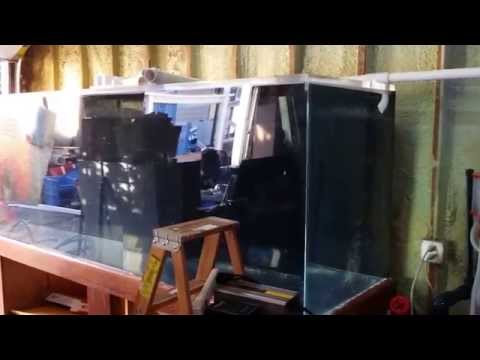 Quiet overflows! 600 gallon saltwater reef Garage system build Episode 3