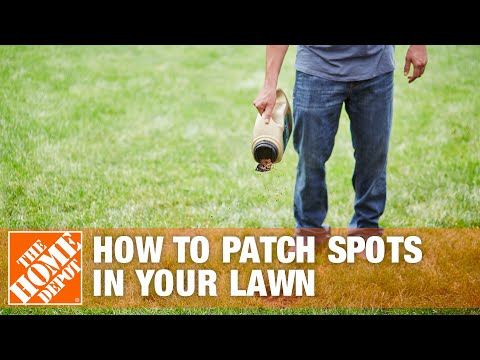 How To Patch Spots in Your Lawn - The Home Depot