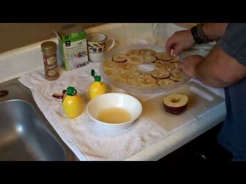 Dehydrated Trail Snacks Mini Series Apple Chips Wi