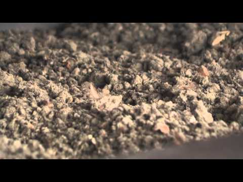 VDL Agrotech PoulDry, new poultry manure drying system