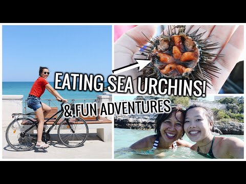EATING SEA URCHINS AND FUN ADVENTURES! Italy Travel Vlog #6