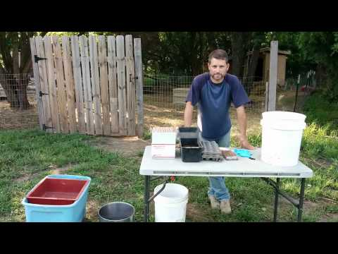 Part 1 Preparing Food For Worms For Getting Rid Of Unwanted Pests