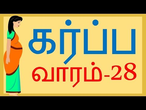 Pregnancy   Tamil   Week by week  Week 28