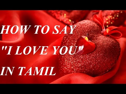 HOW TO SAY I LOVE YOU IN TAMIL