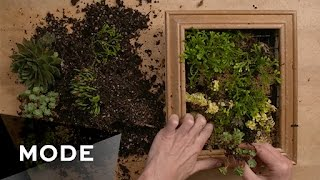 DIY Succulent Wall Frame | Glam It Yourself ★ Glam.com