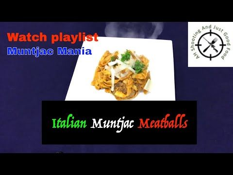 How to make authentic Italian meatballs. AHSAJGF