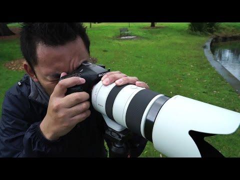 Sony a77 Mark II Review | John Sison