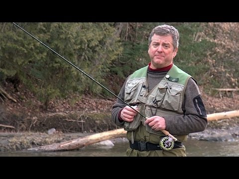 Fly Fishing Camp, Paddle Boarding, Steam Mill Brook WMA, Baby Turtle Release