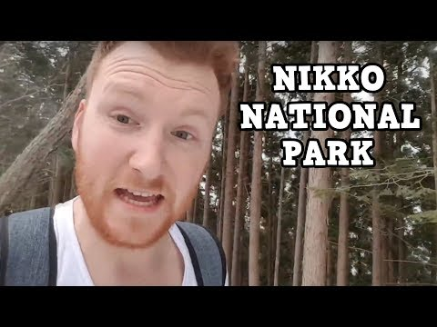 HOW TO GET FROM TOKYO TO NIKKO BY TRAIN!