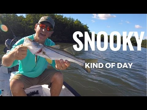 A Snooky Kind Of Day. Catching Snook In The Bayou and Trying Out My Prowler 55 Trolling Motor