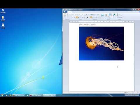 Basics 2 How to use WordPad