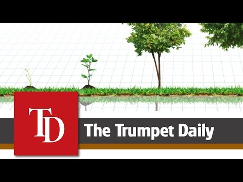 Overcome Complacency - The Trumpet Daily