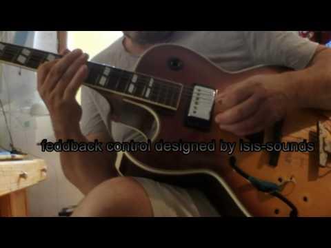 guitar effect sounds like a flute/organ