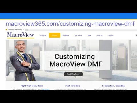 Webinar Customizing MacroView DMF