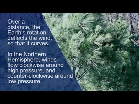 The Atmosphere in Motion: The Science of Wind