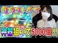 【ろあ】デッキ紹介&虹のコトダマ5000個放出!!【コトダマン】