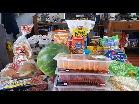 GIANT monthly ALDI 'S grocery haul |Budget large family|$130
