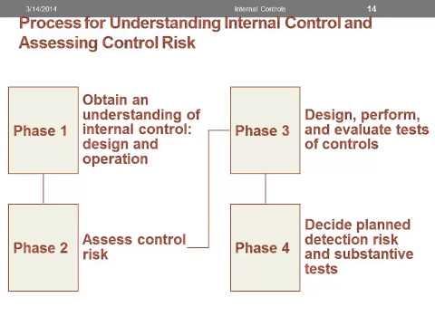 Process for Understanding Internal Control & Assessing Control Risk