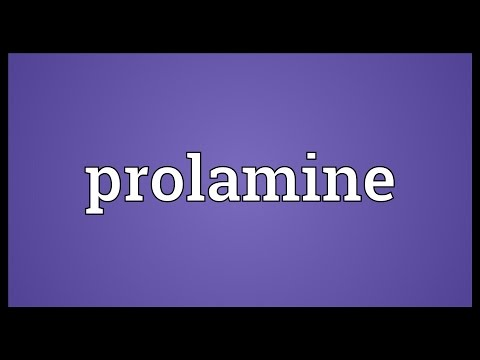 Prolamine Meaning