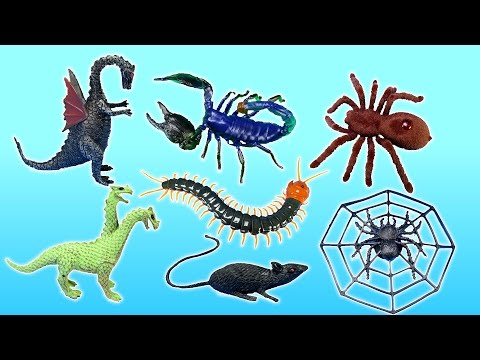 Animal Planet Insects Monsters Creatures Toy Collection + Scolopendra Spider Scorpion Toys For Kids