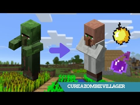 Minecraft | How To CURE A ZOMBIE VILLAGER *Full Tutorial* | Mob Tutorial