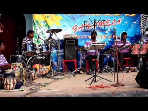 Concert @Elephant Festival in Kerala