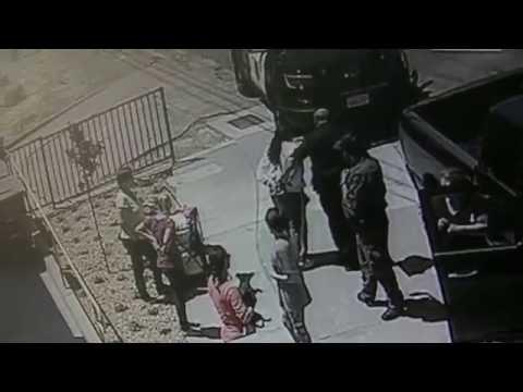 TRASH LADY PUTS DOG IN GARBAGE